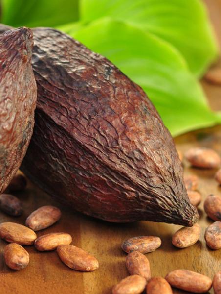 Kakao CO2-Extrakt