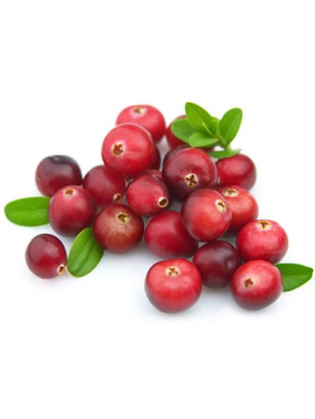 Cranberryöl, cold pressed