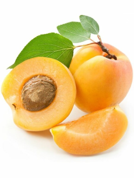 Aprikosenkernöl, kaltgepresst,  organic